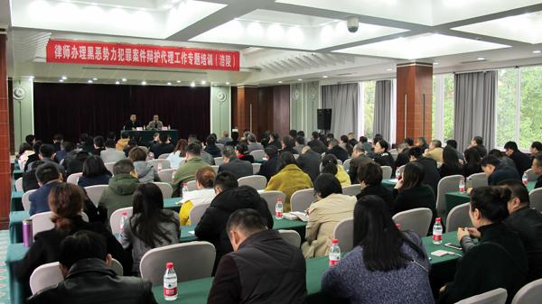 市律协刑专委在涪陵区举办重庆亿博app下载办理黑恶势力犯罪案件辩护代理工作专题讲座
